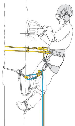 Схематичное изображение снаряжения Petzl для демонтажа деревьев