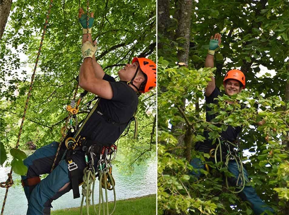 Работа на деревьях с Petzl ZIGZAG и CHICANE