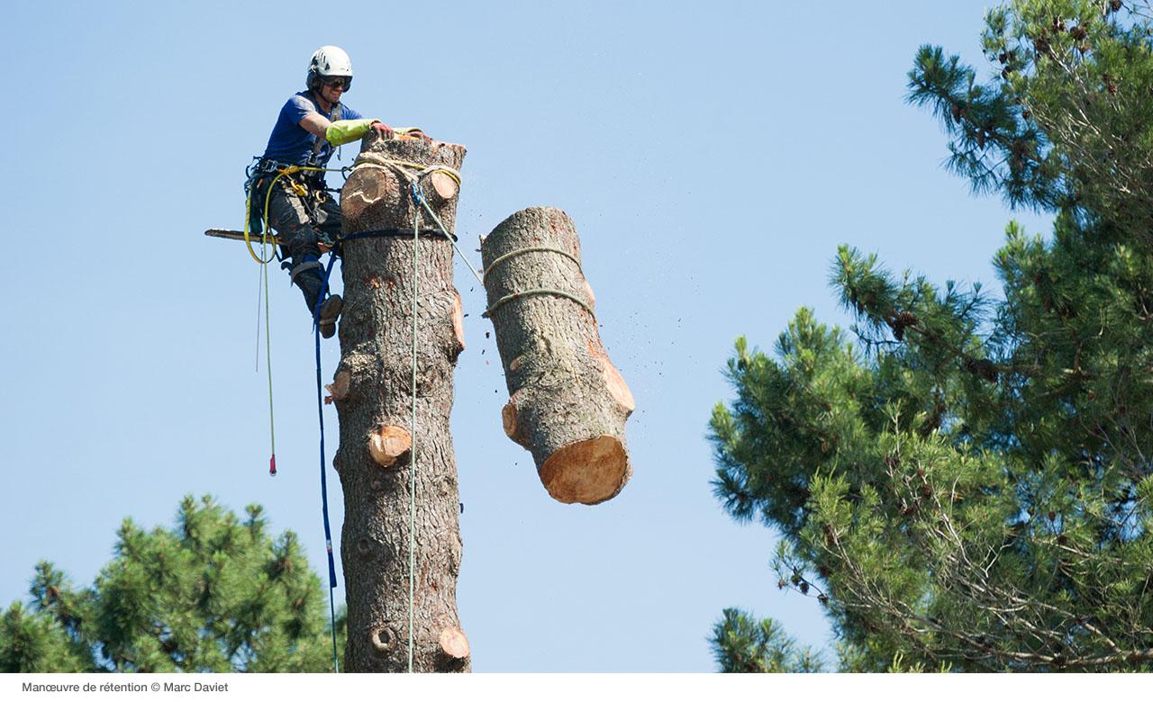 Сброс частей дерева с верхней точки с использования полиспаста